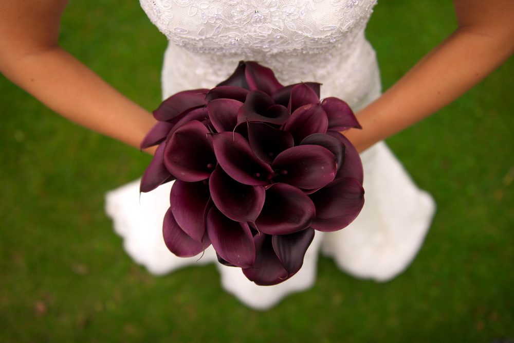 Wedding flowers packages cheap